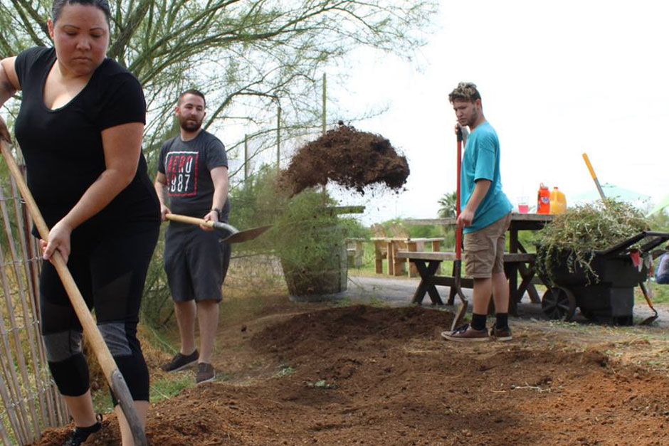 Volunteering At Singh Farms