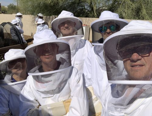 Visiting Honey Hive Farms & Expanding Comfort Zones